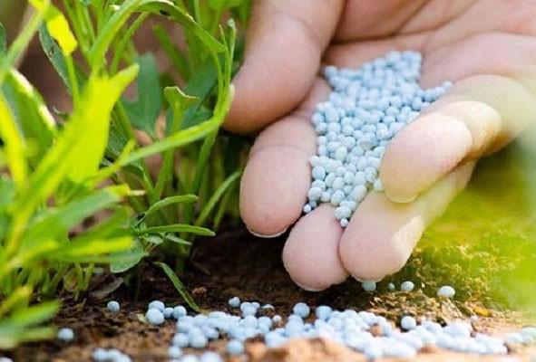 تخصیص ارز نیمایی به کودهای کشاورزی به چه صورت است؟